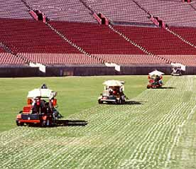 Turf Drills - Turf Bits - Turf Drill Bits - Turf Maintenance Tools - TDS Series - SQUARE FLUTE - AERIFICATION - FOOTBALL - BASEBALL - SOCCER - GOLF - PARADE